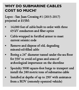 Bulleted list explaining the high cost of submarine cables.