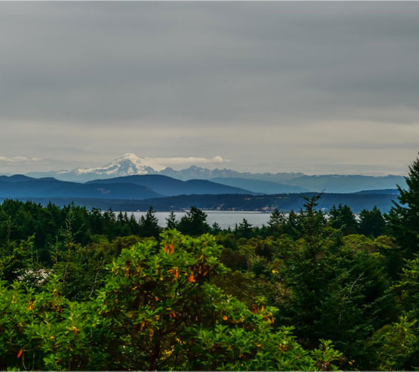 Gene Nery photo of Mt Baker in the distance